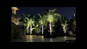 Lights For Backyard by Landscape Lighting Lampscape Designs