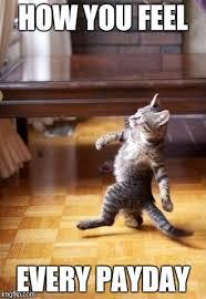 Payday Meme - cool cat stroll meme imgflip