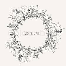 grape vine sketch frame round label stock vector colourbox