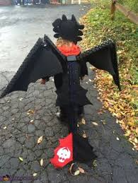 Toothless Halloween Costume Perfect Pair Sibling Halloween Costume Ideas Sibling