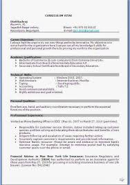 curriculum vitae format how to write a cv samples curriculum