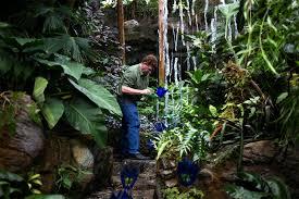 The Missouri Botanical Garden Garden Of Glass At Missouri Botanical Gardens Promises Whimsy By