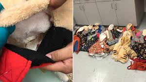 4 pounds of cocaine found sewn in clothes at airport