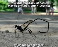 Mosquito Meme - kill it with fire now meme 2015 jokeitup com