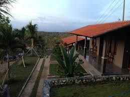 best price on 3d home stay in bali reviews
