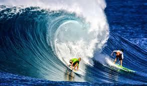 surfer u0027s paradise three oahu beach homes for surfers