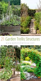 How To Build A Trellis by 21 Easy Diy Trellis U0026 Vertical Garden Structures A Piece Of Rainbow