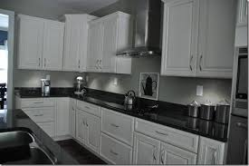 Kitchen Cabinets Lighting by Under Cabinet Lighting U2014 Decor And The Dog