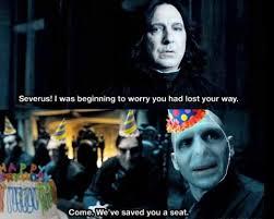 Harry Potter Birthday Meme - harry potter memes typicalmuggle twitter