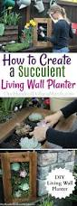 How To Make A Succulent Wall Garden by Diy Sedum And Succulent Living Wall Planter One Hundred Dollars
