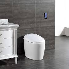 toilets costco