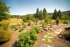 home green acres landscape salem oregon