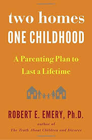 two homes two homes one childhood a parenting plan to last a lifetime