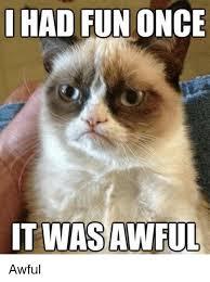Grumpy Cat Meme I Had Fun Once - i had fun once itwas awful awful grumpy cat meme on me me