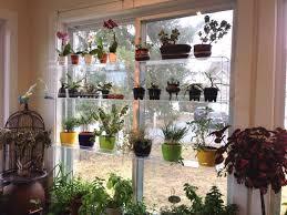 beautiful bay windows stunning beautiful bay window plant stand