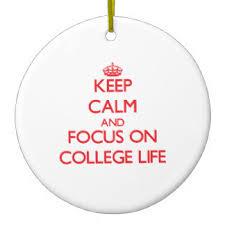 college ornaments keepsake ornaments zazzle