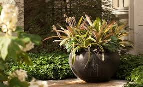 chic and creative container garden design ideas gorgeous large