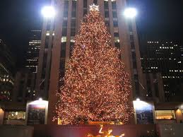 central park christmas tree christmas pinterest central park