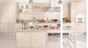 Can You Paint Mdf Kitchen Cabinets Kitchen Cabinets Mdf Interior Design