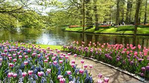sumptuous design inspiration beautiful gardens keukenhof garden