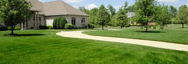get lawn care service in st louis mo from alan u0027s lawn care today