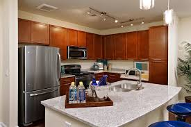 kitchens with granite countertops best home interior and