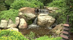 Aquascape Environmental Aquascape Videos Aquascape Statuary Water Pumps