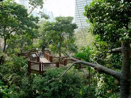 Hong Kong Zoological And Botanical Gardens Hong Kong Zoological And Botanical Gardens With Regard To Popular