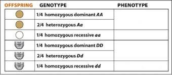 inheritance pattern quizlet learning curve ch 7 chapter quizzes flashcards quizlet