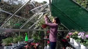 Palram Hybrid Greenhouse Palram Nature Series Greenhouses Clear Youtube