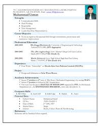 Network Engineer Resume 2 Year Experience Esl Homework Ghostwriters Service Ca Paragraph Form Resume Sample
