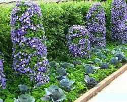 beautiful vegetable garden designs from www landscape design