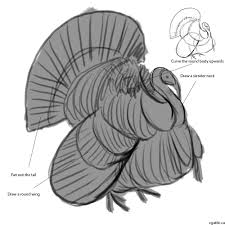 draw thanksgiving turkey my turkey drawing experience learning how to draw a turkey one