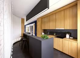 Long And Narrow Kitchen Designs Kitchen Design Blue And Black Kitchen Design Realizing A Black