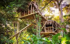 three house this jungle treehouse in panama is minutes walk from the