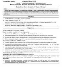 Examples Of Good Resume Objectives Cv Examples Travel Consultant Global Warming Causes And Effects