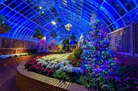 phipps conservatory christmas lights phipps conservatory and botanical gardens on twitter the majestic