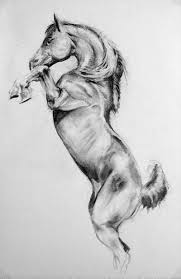 horse sketch by tyrus88 on deviantart