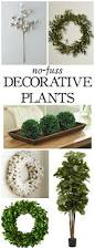 the best no fuss plant decor items you need in your home little the best no fuss plant decor items you need in your home littleredbrickhouse