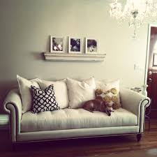 bedroom interesting tufted sofa with zgallerie furniture and