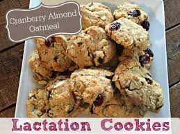 best 25 easy lactation cookies ideas on pinterest lactation