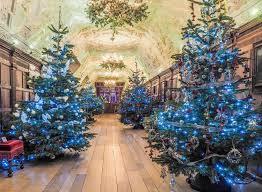 christmas tree advice from hever castle head gardener neil miller