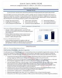 pretty looking professional resume samples 15 executive resume