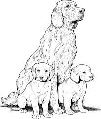 labrador puppies coloring free printable coloring pages
