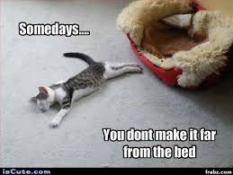 Get Out Of Bed Meme - hard to get out of bed meme generator captionator caption
