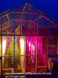 Hps Lights Michael Dzakovich A Light Changing Experiment