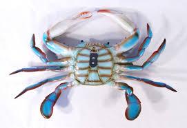 Nautical Home Accessories Decorating Ideas Artistic Diy Rustic Wooden Blue Crab Door Stop