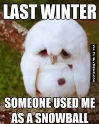 Winter Meme - the best winter memes collection winter sucks memes winter and