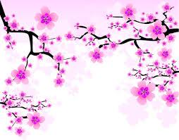 japan cherry blossoms free vector 02 u2013 over millions vectors