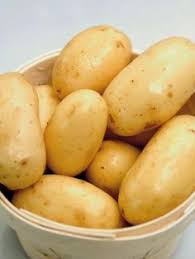 Chinese Root Vegetables - cheap seed tree buy quality fruit vegetable juice fast directly